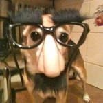 Groucho Barx - May '10