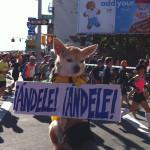 NY Marathon - Nov '10
